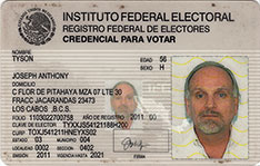 Instituto Federal Electoral (IFE) Mexico voter registration card 2001